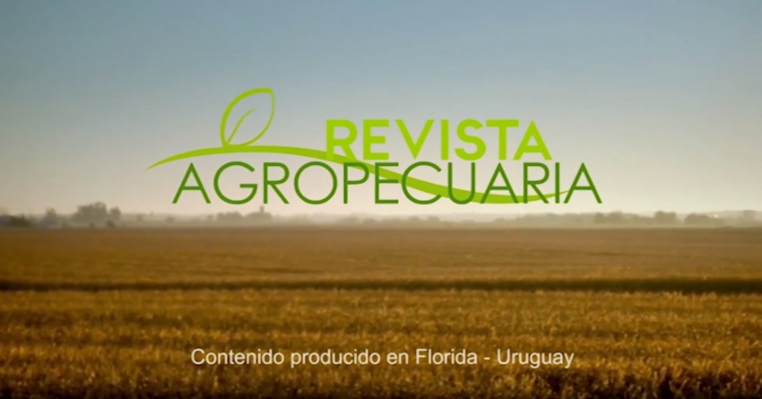 Revista Agropecuaria 07-01-2019