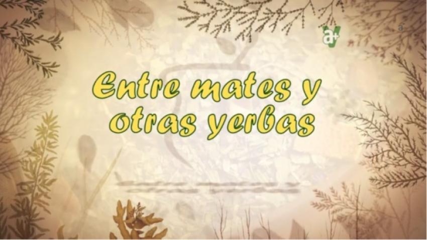 ENTRE MATES Y OTRAS YERBAS 08-06-2019