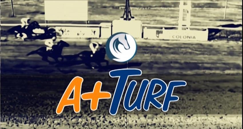A+Turf 21-01-2019
