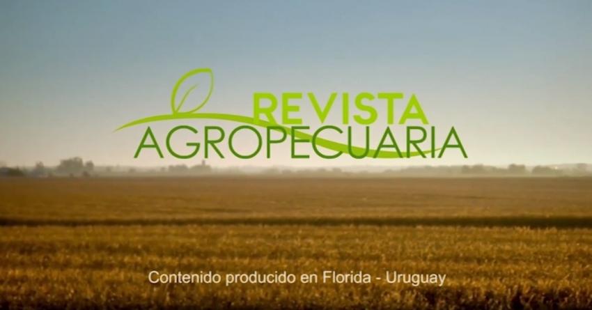 REVISTA AGROPECUARIA 01-07-2019